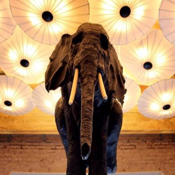 escultura elefante casa ozama